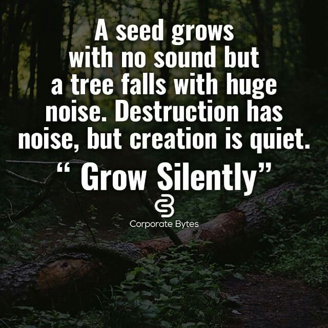 Inspiration Quotes A Seed Grows With No Sound But A Tree Falls With Delectable Planting Seeds Inspirational Quotes