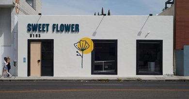 A Dispensary That Caters To The Canna-Curious